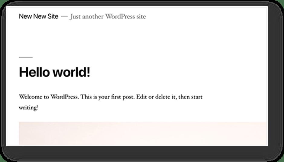 Not Removing WordPress Demo Content
