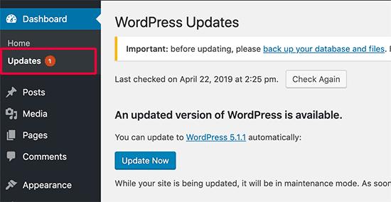 ignoring wordpress update